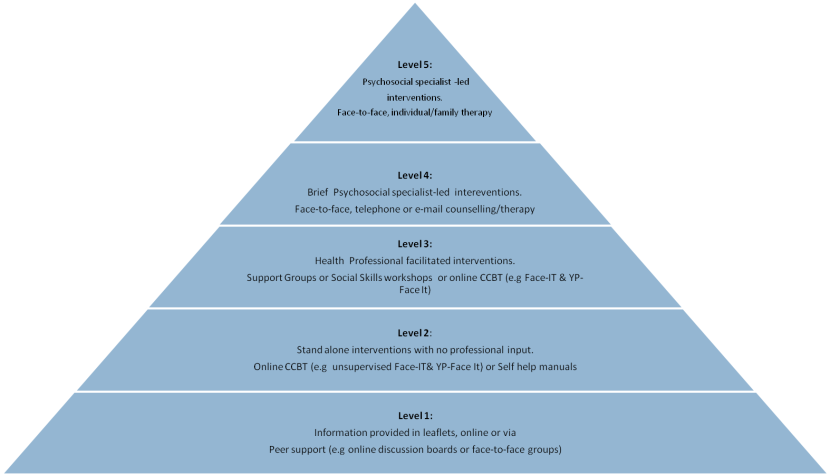 CAR framework of psycho-social intervention delivery